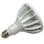 LED PAR38 Specialty